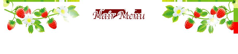 ws_menu_title